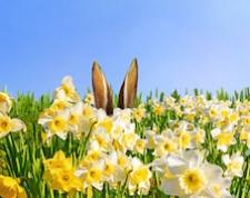 Qualche curiosità sulla Pasqua in Germania